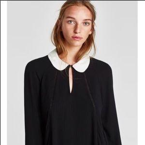 New Zara Peter Pan collar black and white